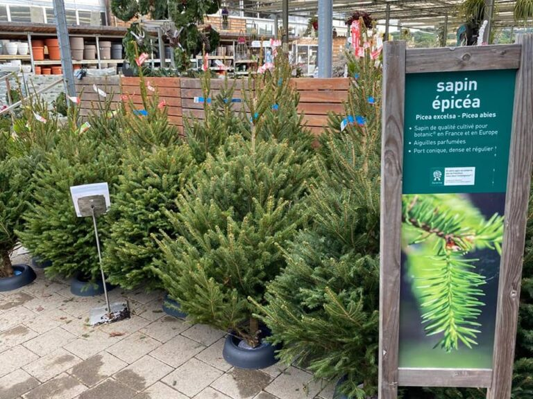 Botanic® Les Sapins Sont Là! Oh Oh Oh